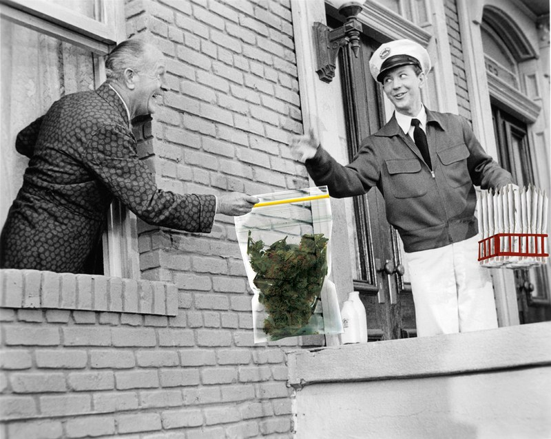 Cannabis Delivery Business - cannabusinessplans ca