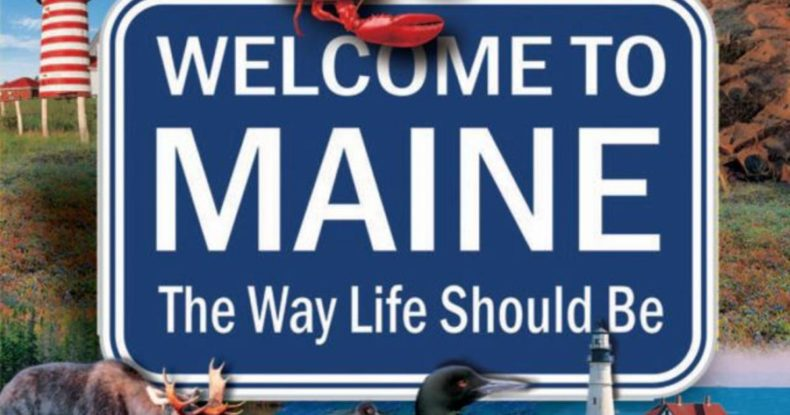 What cannabis business can you start in Maine?