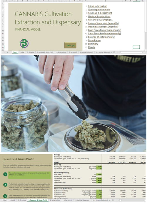 cannabis cultivation extraction dispensary financial model