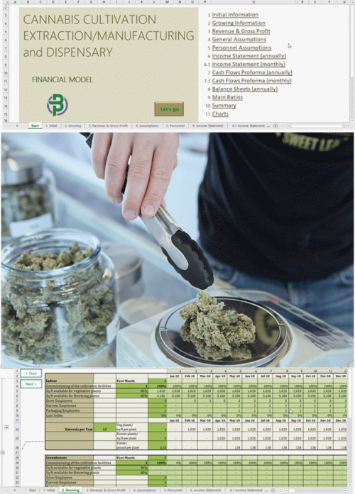 cannabis cultivation extraction manufacturing dispensary financial model