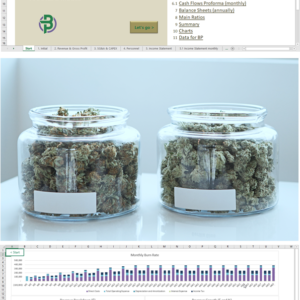 Cannabis Dispensary Financial Model