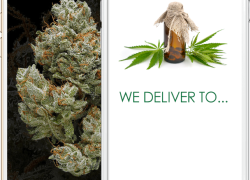 How to Start a Cannabis Delivery Service Business