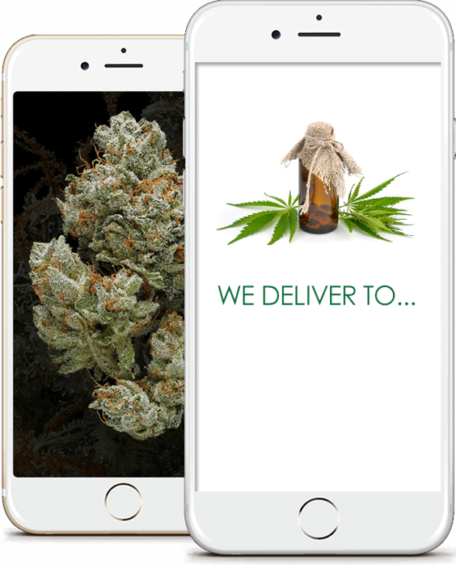 cannabis delivery service business