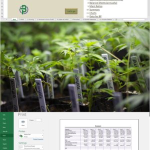 Cannabis Clones/Seeds Nursery Financial Model