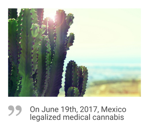 Mexico cannabis market