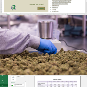 Cannabis Financial Model for Cultivation, Manufacturing, Distribution and Retail, Microbusiness