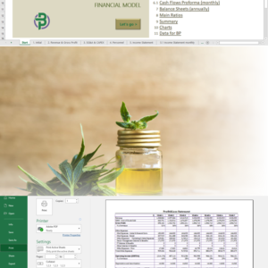 CBD Products Retail/Online Store Financial Model